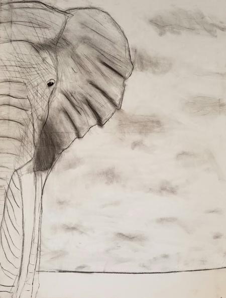 elephant-bria-neff
