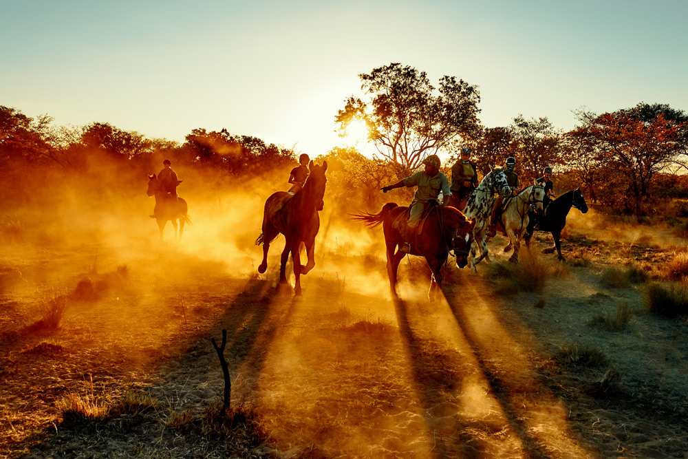 horse-riding-game-census-the-ant-collection