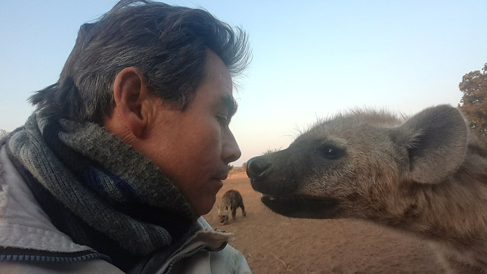 hyena-sniff-kim-wolhuter