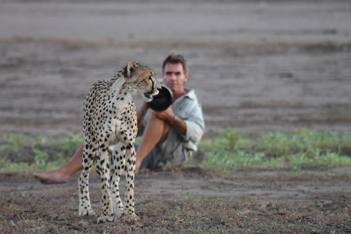 kim-and-cheetah-Penny-Wolhuter
