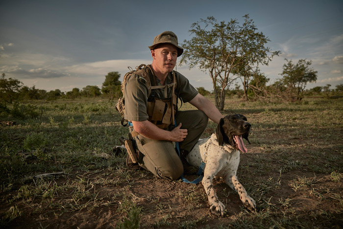 kruger-anti-poaching-dog