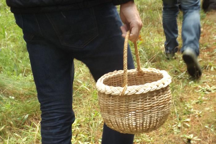 mushroom-forage-basket