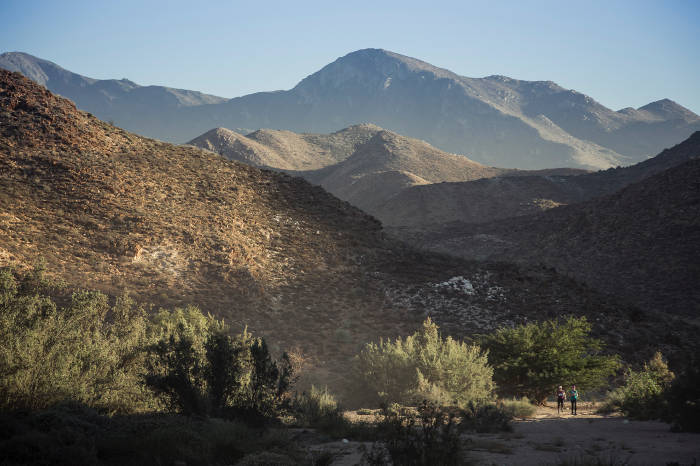 richtersveld-trail-run