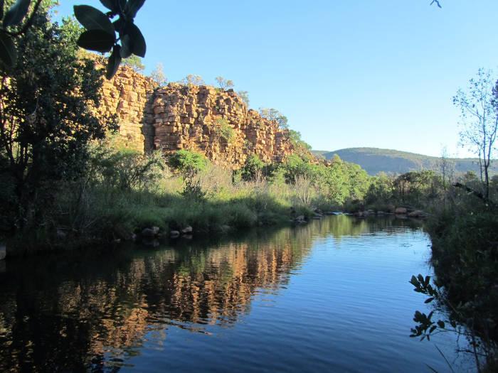 trails-lodge-walk-elephant