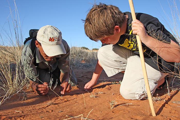 A-young-guest-learning-from-local guides-in-Kalahari