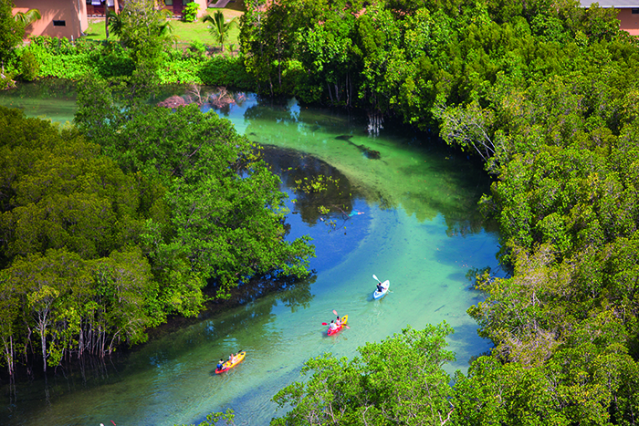 Constance Ephelia Resort guests enjoying the opportunity to kayak through the mangroves
