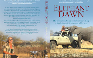 Elephant-Dawn_Full-Cover