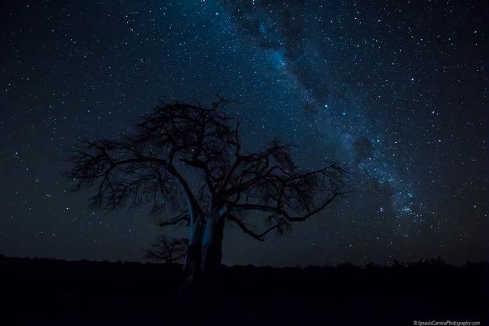 astrophotography-botswana
