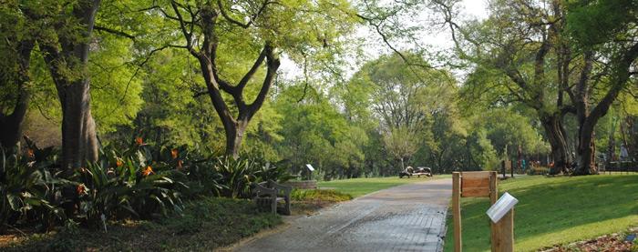 garden-landscape-south-africa