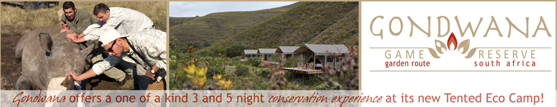 Gondwana Lodges