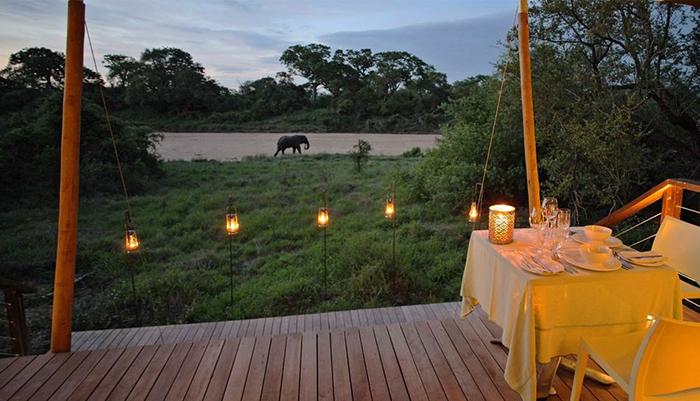 on-safari