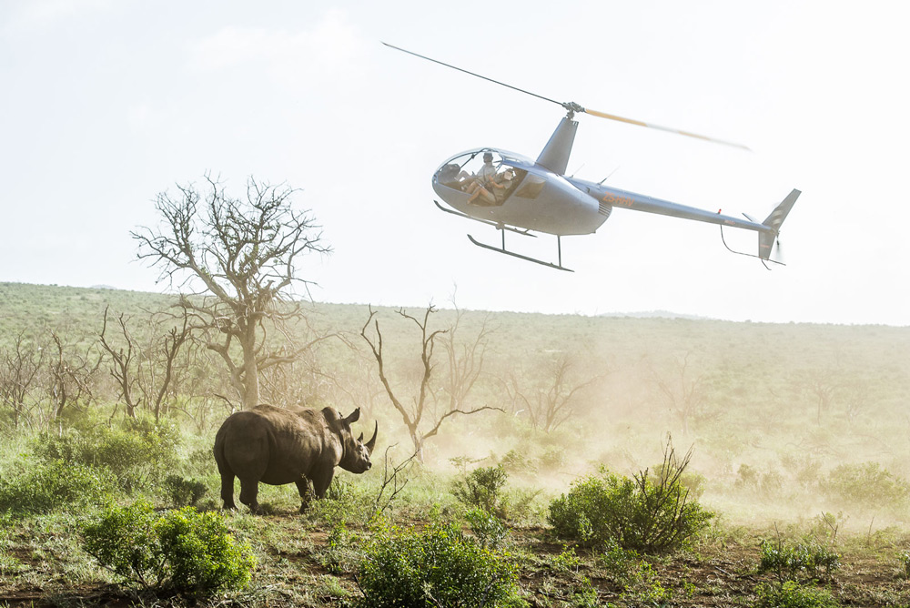 rhino-helicopter-peter-chadwick