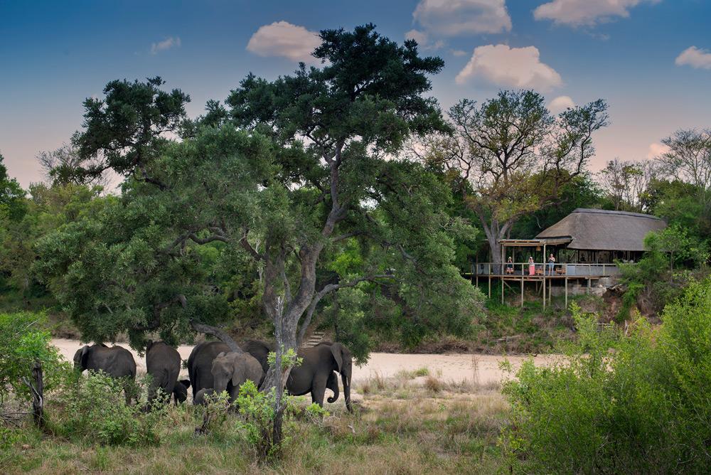 tanda-tula-safari-camp
