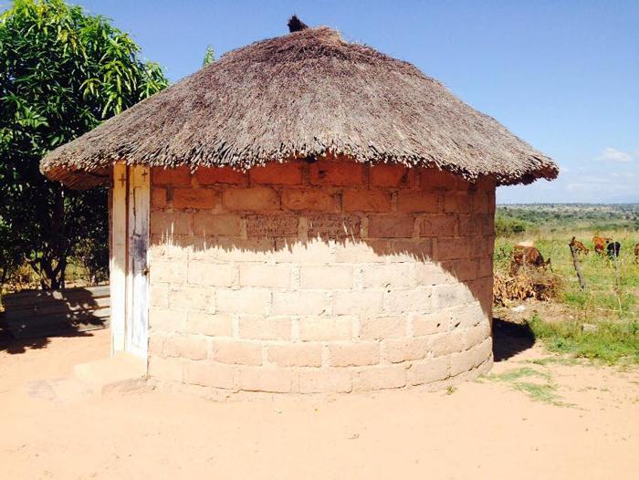 traditional-village-hut