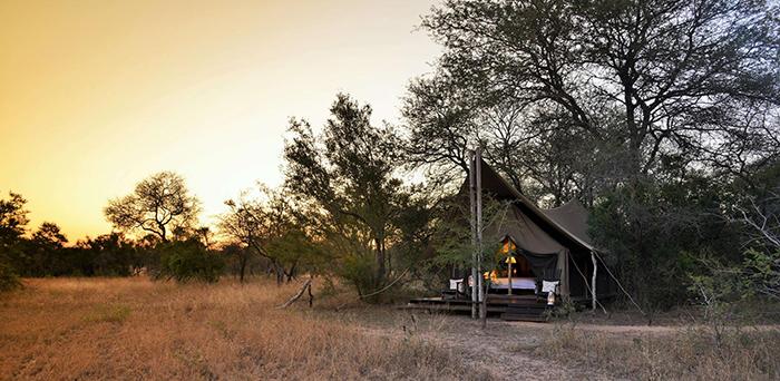 tented-camp-at-kruger-national-park