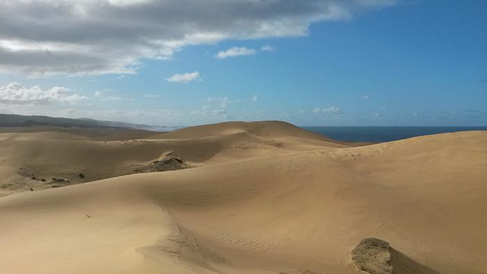 addos-alexandria-hiking-trail