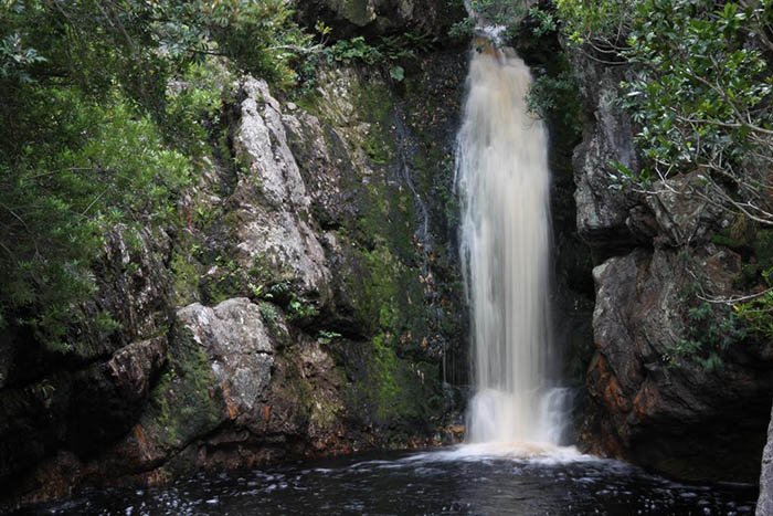 Waterfall, Harold Porter National Botanical Garden, Bettys Bay, Western Cape, South Africa