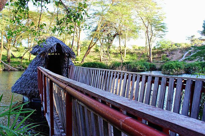 Observation hut (2)