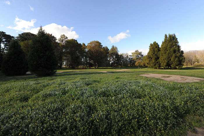 paarl-arboretum