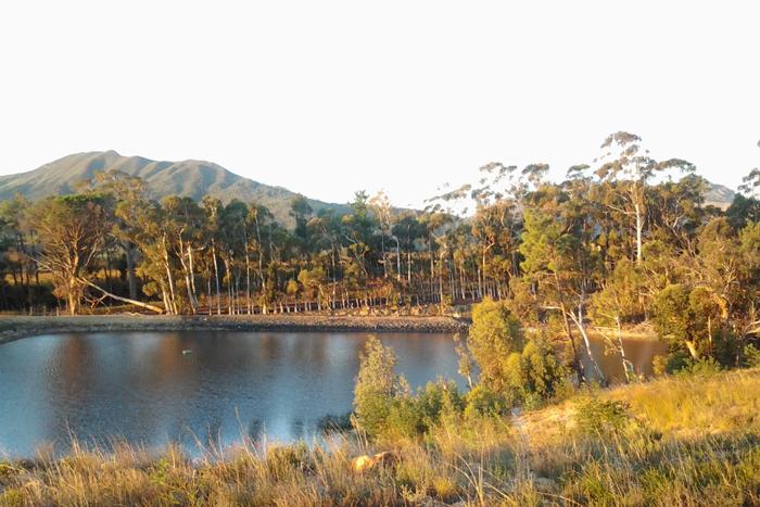 The scenery up Bainskloof Pass