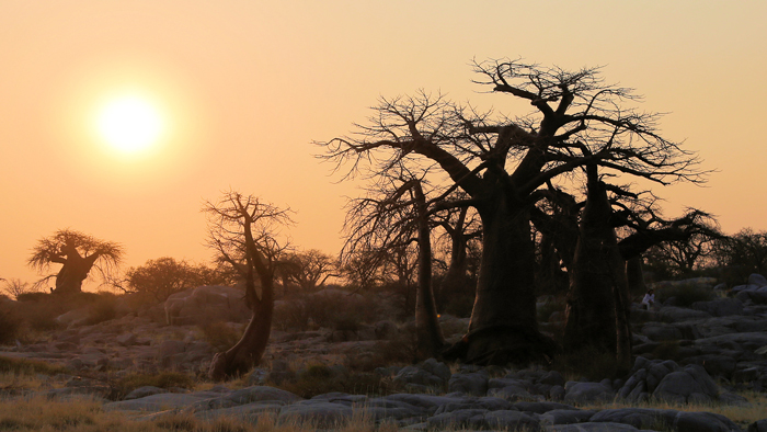 The beautiful landscape of the Kruger to Canyons area ©Wynand Uys