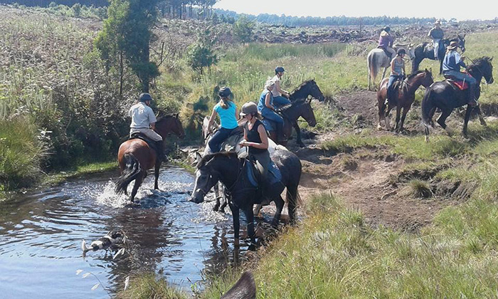 horse-riding-kaapse-horse-trails
