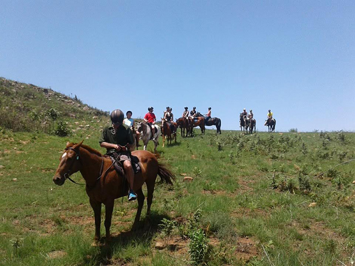 horseriding-from-horse-trails