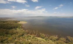 kenya-lake-nakuru