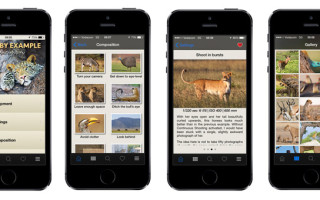 learn-by-example-app-screens