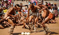 ostrich-hunt-dance