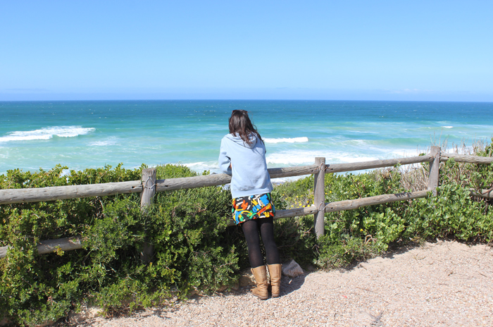 whale-watching-de-hoop