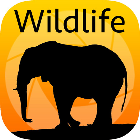 wildlife-app-icon