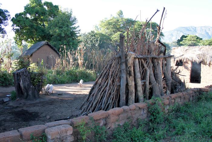 wood-pile-fuel-mwale