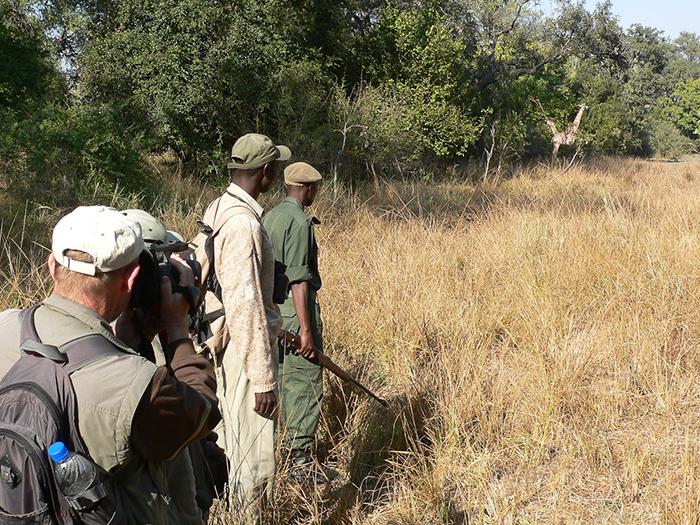 walking-safari-in-south-luangwa