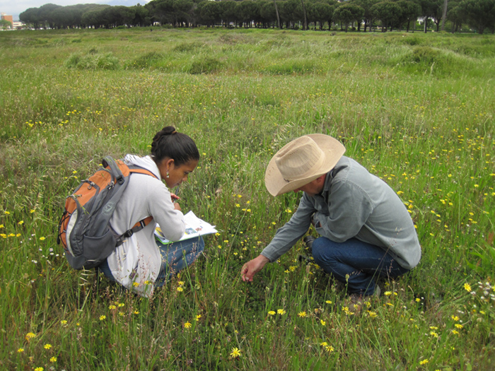 botanical-society-caring-for-the-earth