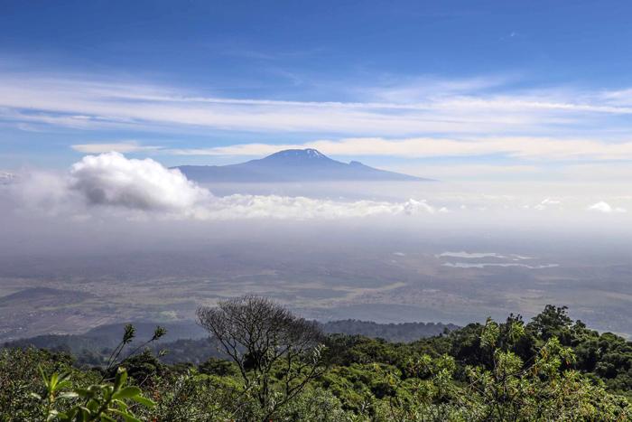 Mount Kilimanjaro Viva Africa Tours