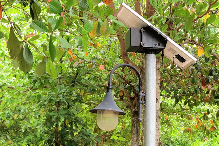 solar-powered-garden-lights