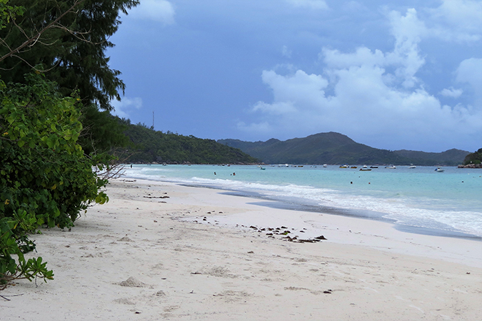 the-beautiful-cote-dor-beach