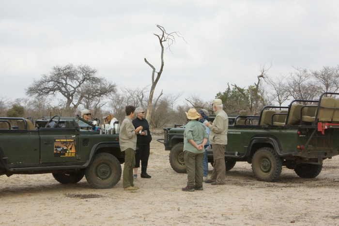 art-on-safari-game-vehicles