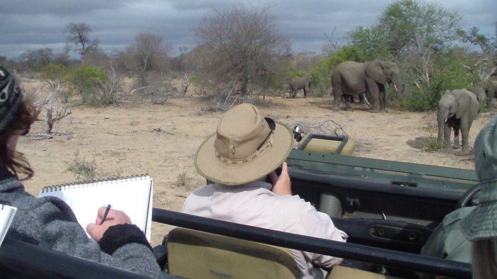 Artists on a game drive vehicle, Art safari in Africa