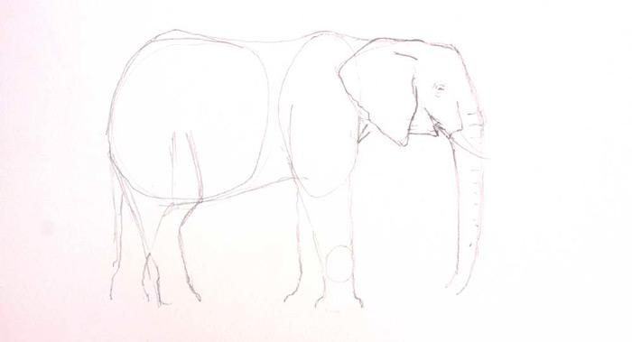 elephant-sketch-art-on-safari