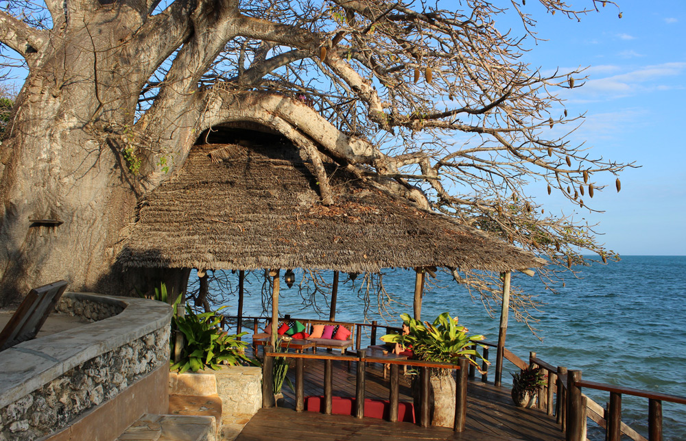 Round off the day with a Happy Hour cocktail under an ancient baobab tree at Fumba Beach Lodge ©David Capes-Winch