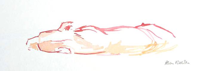 lioness-sketch-art-on-safari