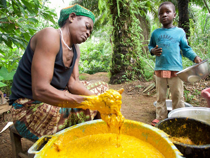 Smallholders have been farming palm oil for decades in Cameroon. But the country has not seen industrial palm oil development seen in Indonesia.