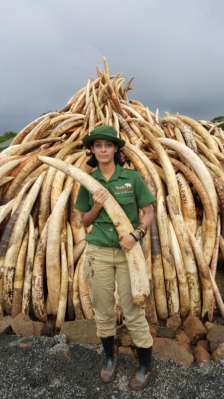 ranger-elephant-tusks