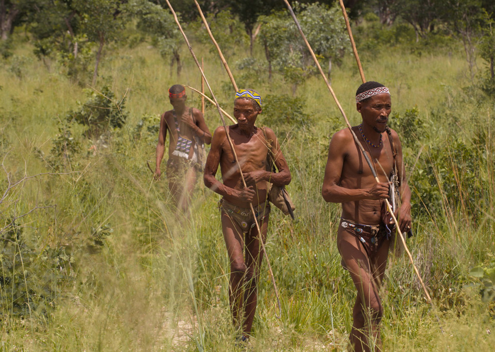 san-bushmen-walking