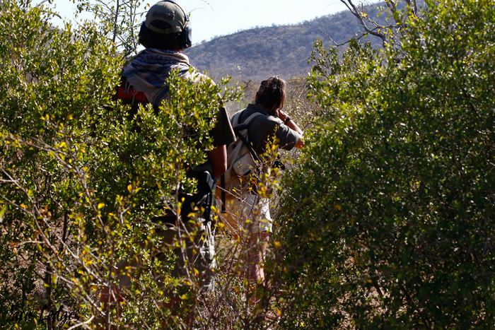 walking-in-the-bush