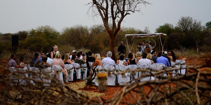 bush-wedding