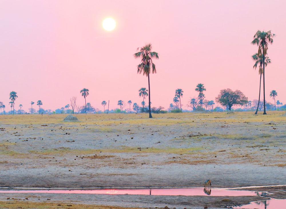 the-hide-mbiza-sundowners