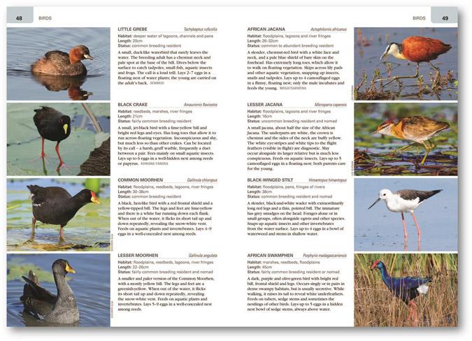 wildlife-of-the-okavango-book